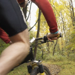 Cropped Biker in Forest